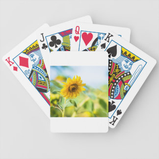 Field of Sunflowers Bicycle Playing Cards