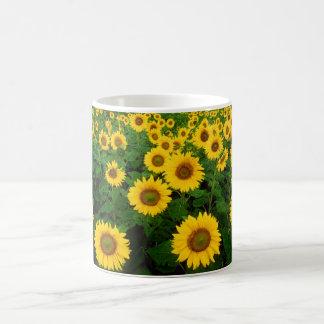 Field of Sunflowers Classic White Coffee Mug