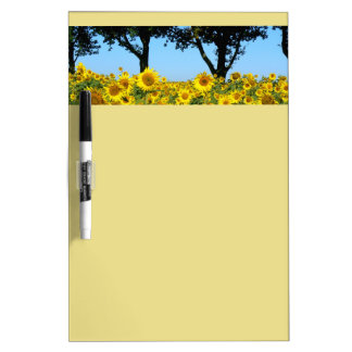Field of Sunflowers, Sunflower 01.2 Dry Erase Board