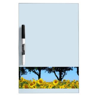 Field of Sunflowers, Sunflower 01.2 Dry Erase Board