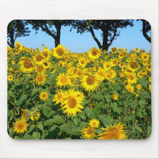 Field of Sunflowers, Sunflower Mouse Pad