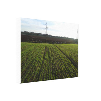 field of the city canvas print