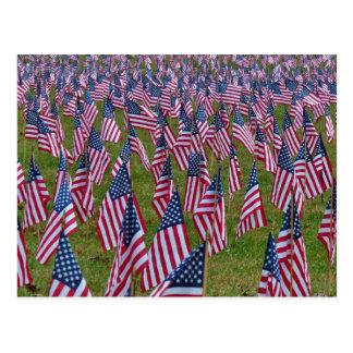Field of US Flags Postcard