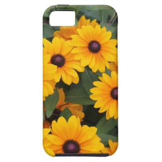 Field of yellow daisies case for the iPhone 5