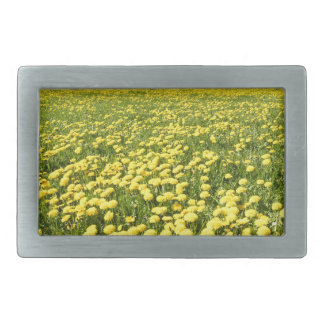 Field of yellow dandelions in grass with tree line rectangular belt buckles