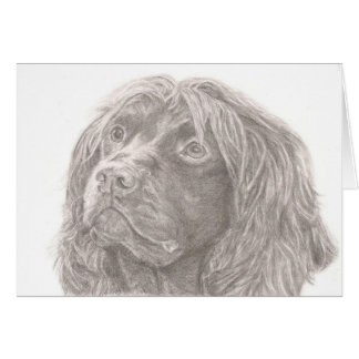 Field Spaniel Greeting Card