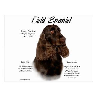 Field Spaniel History Design Postcard