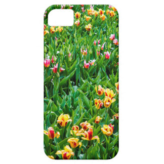 Field with Pink and Yellow Tulips Case For The iPhone 5