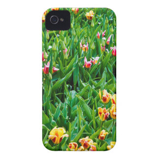 Field with Pink and Yellow Tulips Case-Mate iPhone 4 Case