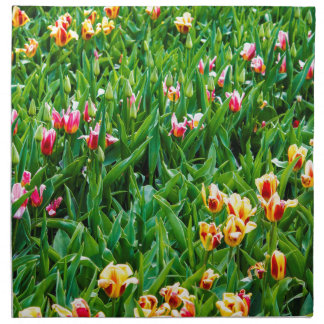 Field with Pink and Yellow Tulips Napkin