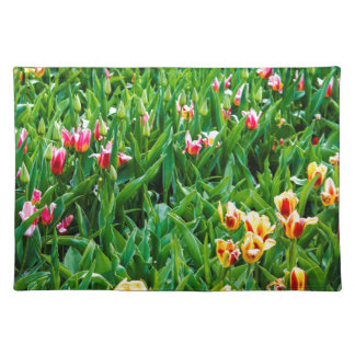 Field with Pink and Yellow Tulips Placemat