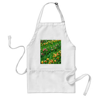 Field with Pink and Yellow Tulips Standard Apron
