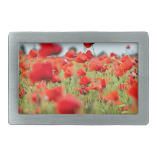 Field with red papavers belt buckle