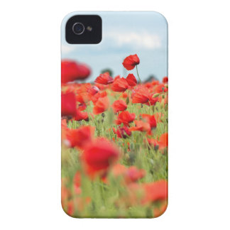 Field with red papavers iPhone 4 Case-Mate case