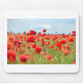 Field with red papavers mouse pad