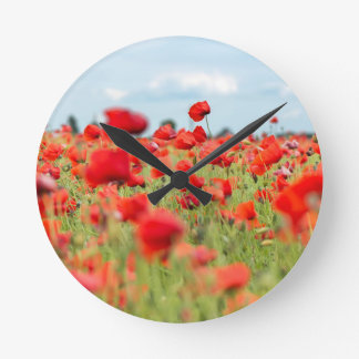 Field with red papavers round clock