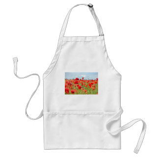 Field with red papavers standard apron
