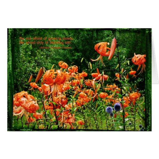 Fields of Lilies Card