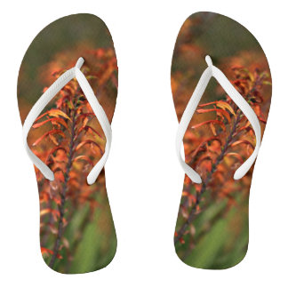 Fields of Orange Agave Flip Flops
