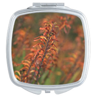 Fields of Orange Agave Mirror For Makeup