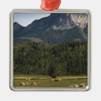 Fields with bailed hay, Alberta, Canada Silver-Colored Square Ornament