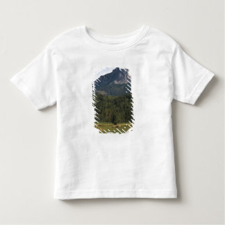 Fields with bailed hay, Alberta, Canada T-shirts