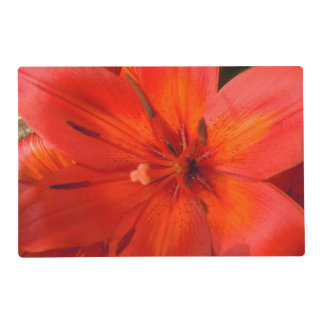 Fiery Orange & Red Lily II Laminated Placemat