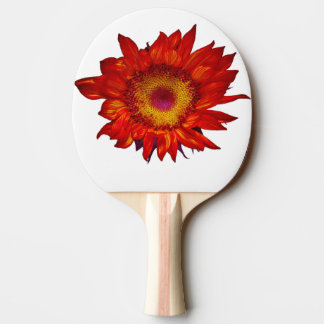Fiery Red Sunflower on White Ping Pong Paddle