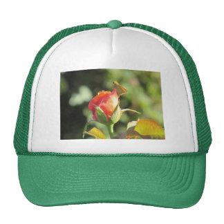 Fiery Skipper Butterfly on Rosebud Trucker Hats