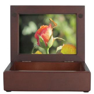 Fiery Skipper Butterfly on Rosebud Memory Boxes