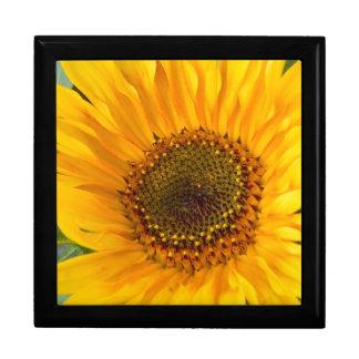 Fiery Sunflower Gift Box