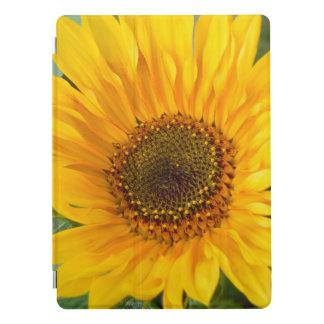 Fiery Sunflower iPad Pro Cover