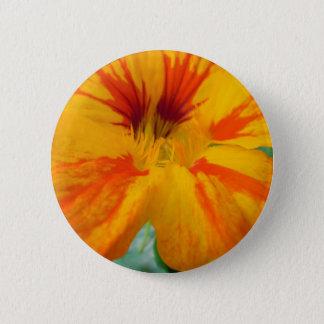 Fiery Tones Nasturtium 2 Inch Round Button