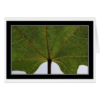 """""""Fig Leaf"""" Card"""