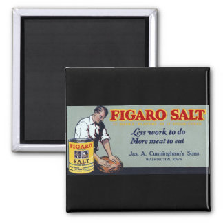 Figaro Salt Ad Washington,IA Magnet