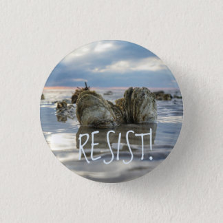Fight for the Chesapeake Bay 1 Inch Round Button