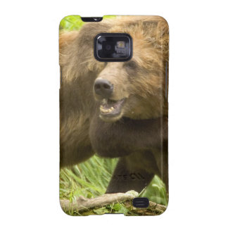Fighting Bears Samsung Galaxy Case Samsung Galaxy SII Covers
