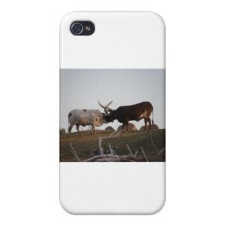 Fighting bulls iPhone 4/4S covers