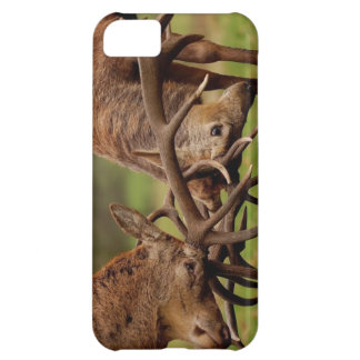Fighting Deer Cover For iPhone 5C