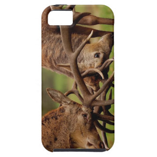 Fighting Deer Case For The iPhone 5