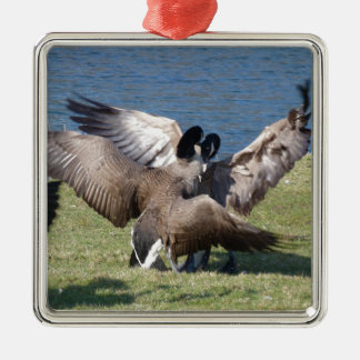 fighting geese Silver-Colored square ornament