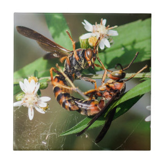 Fighting Paper Wasps Ceramic Photo Tile