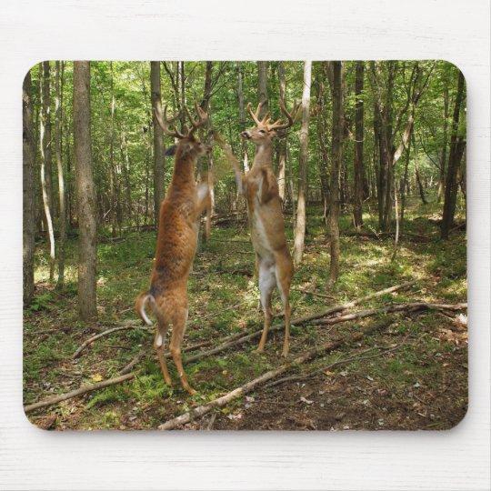 Fighting Whitetail Bucks Mouse Pad