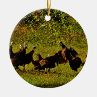 Fighting Wild Turkeys in The Smoky Mountains Christmas Ornament
