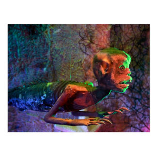 Fiji Mermaid Postcard