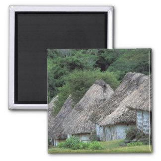 Fiji, Viti, Traditional hut houses. Magnet