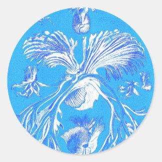 Filicinae on Blue Background Round Sticker