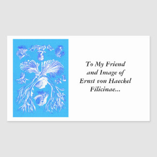 Filicinae on Blue Background Sticker