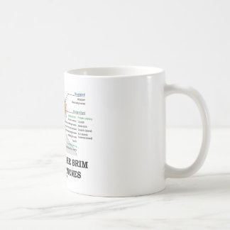 Filled To The Brim With Hormones (Anatomy) Coffee Mug