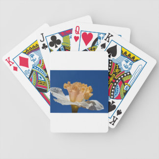Final Chapter Poker Deck